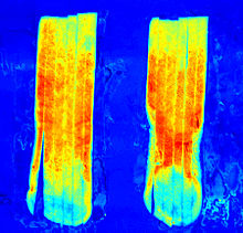 220px-Hyperspectral_image_of__sugar_end__potato_strips